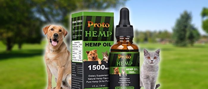 CBD Oil for Dogs- Worthwhile to Study Its Benefits