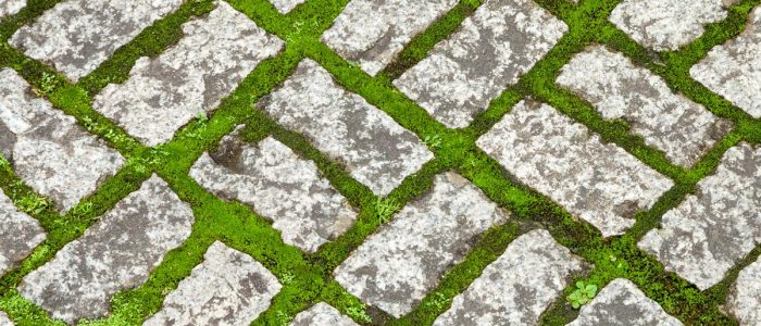 Benefits Of Using Interlocking Paving Stones
